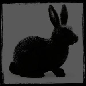 coniglio nero in campo nero